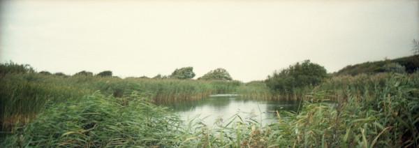 Panorama_duinen01