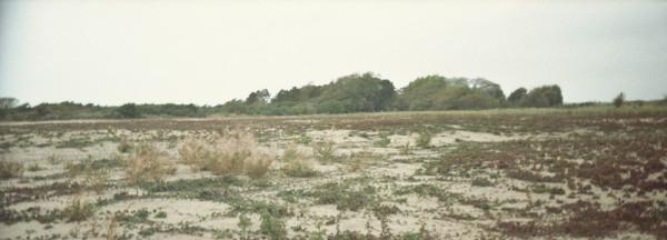 Panorama_duinen07